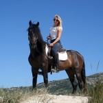Aventura-Ecuestre-Pferd-01