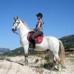 Aventura-Ecuestre-Pferd-02