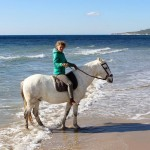 Reiten-Winter-Tarifa-03