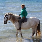 Reiten-Winter-Tarifa-04