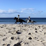 Reiten-Winter-Tarifa-19
