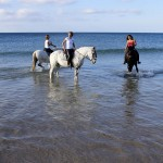Reiten-Winter-Tarifa-23