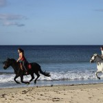Reiten-Winter-Tarifa-26