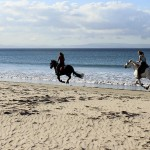 Reiten-Winter-Tarifa-28