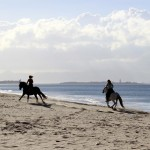 Reiten-Winter-Tarifa-30